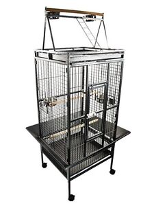 Looking for a Bird Cage