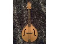 BEAUTIFUL Heartwood Mandolin