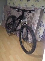 Norco Ryde for sale or trade!
