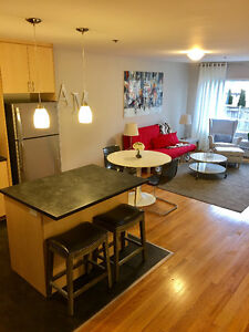 Newly Renovated Spacious 2 Bedroom Unit for August 15th