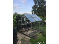 *GREENHOUSE* FREE TO COLLECTOR