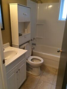 Newly Renovated One Bedroom Apartment in Airport Heights St. John's Newfoundland image 3