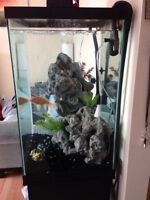 Large Compact Fish tank (Approx 50 galloon)