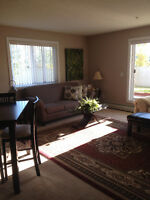WANTED SENIOR TO RENT MY  CONDO IN SPRUCE GROVE