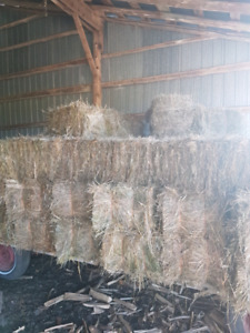 2017 hay for sale
