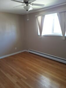 3 BEDROOM UPPER DUPLEX - CRANDALL St. (BIRCHMOUNT SCHOOL AREA)
