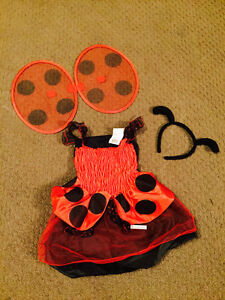 Lady bug costume for 12-18 months
