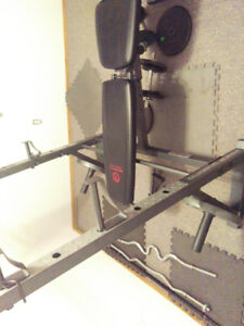 Olympic bench bar and weights.350obo