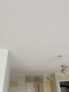 all for $1.0/SF supply Ceiling texturing and apply , Selling and