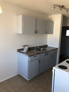 2 BEDROOM APARTMENT - WESTMOUNT / CENTRAL- AVAILABLE ASAP