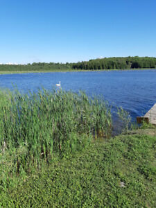 Cottage for rent, Lake Eugenia