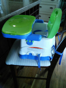 Fisher Price Deluxe Booster Seat/High Chair   Kelowna