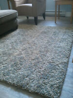 Like New!! Beautiful shag type 5' X 7' area rug