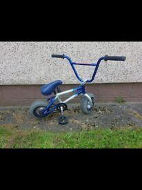 Mini rocker B M X
