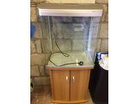 Fish tank NEEDS GONE ASAP CHEAP