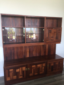 Wall Unit / Rosewood veneer and cherry wood