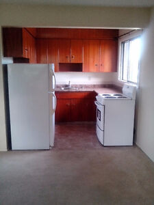 $720/month Spacious Bachelor Suite For Rent September 1st