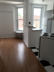 BRAND NEW RENOVATED 2 1/2 MCGILL GHETTO AVAILABLE NOV. 1ST