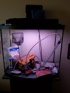 20gal Curved Tank with Stand, etc.- NEW PRICE Peterborough Peterborough Area image 2