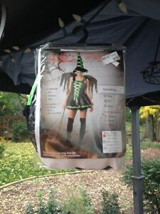 women's Green fairy witch costume
