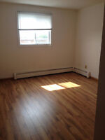 1Bdm Walk to UdeM, Heat/Hot Water Incl, Dog OK, Storage, Parking