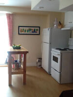 500 sq/ft LEGAL Basement Apartment with WALKOUT-Conestogo Doon