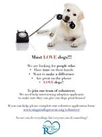 Volunteers Needed to Help Save Dogs!