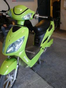 Scooter électrique Écoped vert