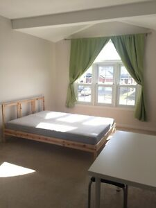 Room for rent for female student - winter term 2017