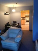 Available Oct. 1st. 2 Bedroom, 1 Bathroom, Downtown Condo.