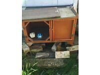 Chicken / rabbit hutch