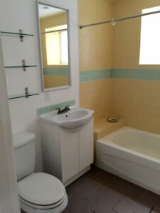 Sunny South Side Basement Suite for Rent
