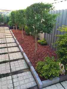 Red woodchip Oakford Serpentine Area Preview