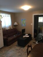 New one bedroom basement apartment