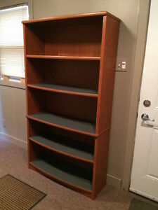 Book Shelf and Cabinet