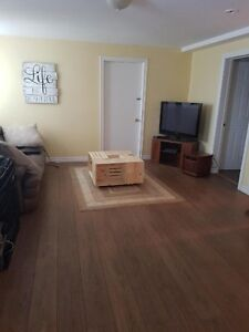 2 bedroom apartment in new Minas