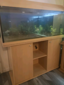 4 foot fish tank and stand