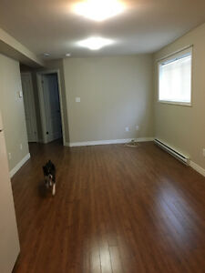 for rent 2 bedroom basement apartment