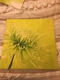 Green flower canvas