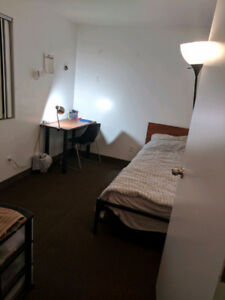 316 King St - Winter Sublet/Fully Furnished!