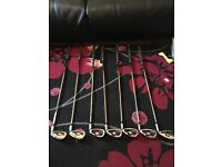 Wilson staff pro staff high moi 5-sw irons with free driving iron