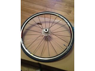 Mavic Aksium Race Wheels