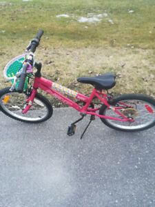 Girls 20 inch Bike with basket and handle bar brakes