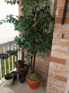 Fake trees - inbox with best offer