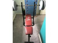 V-fit weight bench press bar