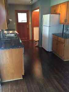 Completely Renovated Large 2 Bedroom Modular Home London Ontario image 8