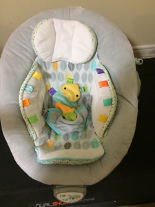 Taggies bouncy seat