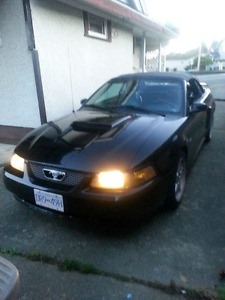Willing to accept trade with cash. Black leather interior, black