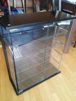 Black Glass Door Display/CD Cabinet (Ikea Kryss)