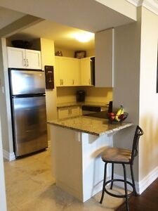 Penthouse condo unit for rent in the heart of Downtown Guelph!